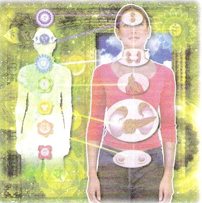 relation between the 7 chakras and the endocrine system
