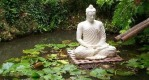 garden of meditation reiki 2