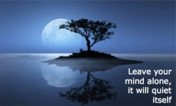 Empty your mind with Meditation and Reiki